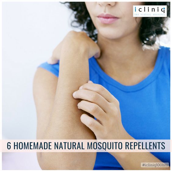 6 Homemade Natural Mosquito Repellents